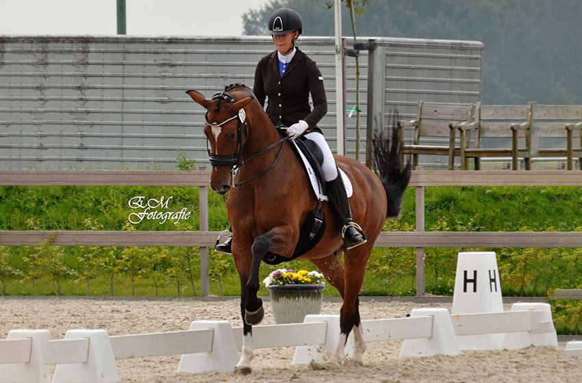 Iris Hoppel and Fergievrouwe at the subtop competitions dressage